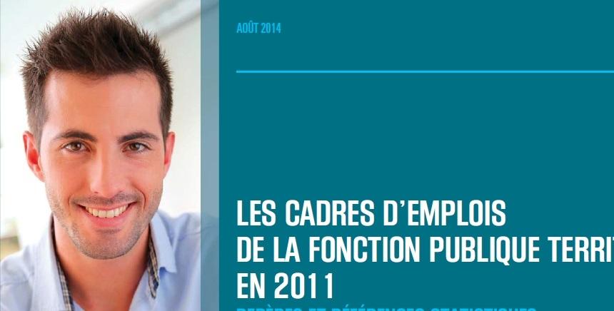 bdce8ef311c Les cadres d emplois de la Fonction publique territoriale en 2011